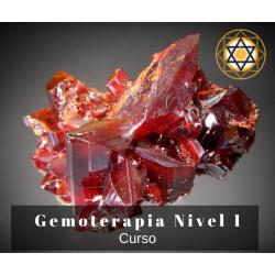 Curso Gemoterapia - Online...