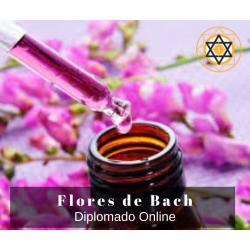 Diplomado de Flores de Bach...